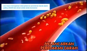 obat pelancar peredaran darah alami